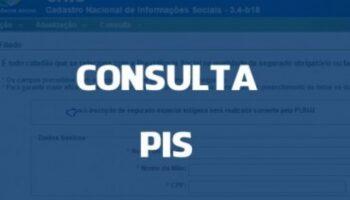 Como consultar o saldo do PIS por telefone, site e app?